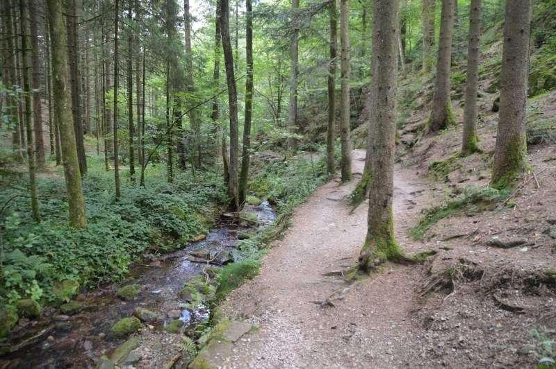 Klettersteig Schwarzwald : Karlsruher grat klettersteig wanderung im schwarzwald