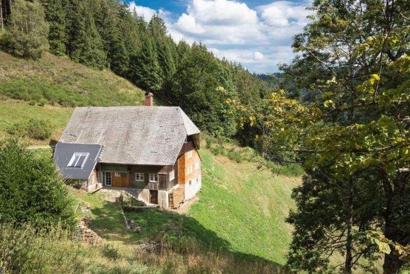 Urlaub mit hund im ferienhaus schwarzwald eingez unt for Design hotel schwarzwald